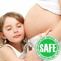 Heaven's Best_Carpet Cleaning Albany Ga_Pregnancy Safe Organic Cleaners