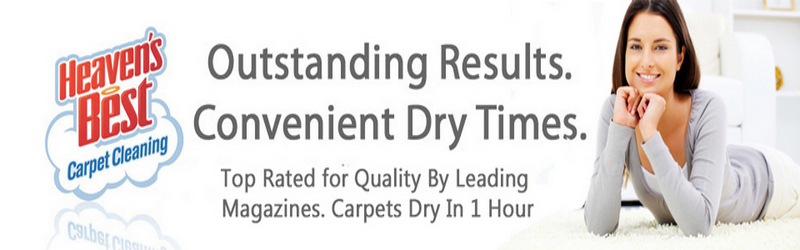 Carpet Cleaners Albany  Residential & Commercial Carpet Cleaning