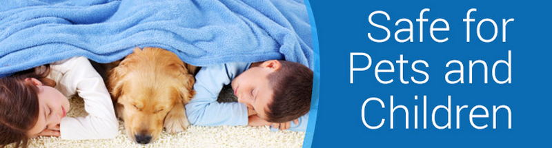 Carpet Cleaning Albany Ga_Heaven's Best Carpet Cleaning_Safe for Pets and Children