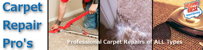 Professional Carpet Repairs_Carpet Re-Streatching Albany Ga_Carpet Cleaning Albany Ga