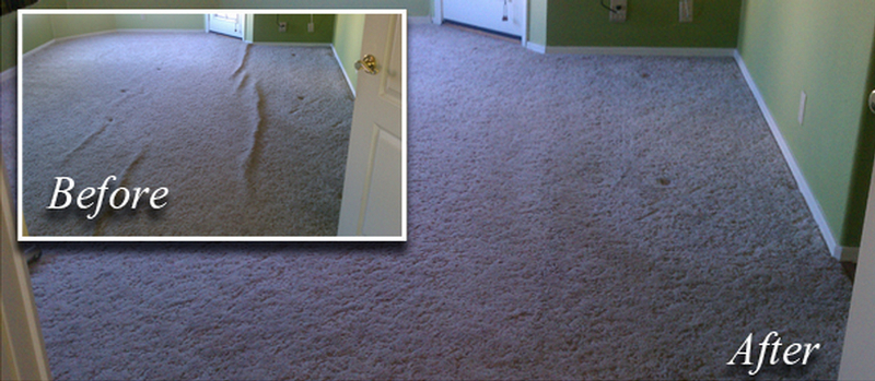 Professional Carpet Repairs_Carpet Re-Streatching Albany Ga_Carpet Cleaning Albany Georgia