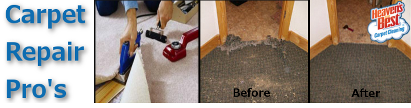 Professional Carpet Repairs_Carpet Re Stretching Albany Ga_Carpet Cleaning Albany Ga